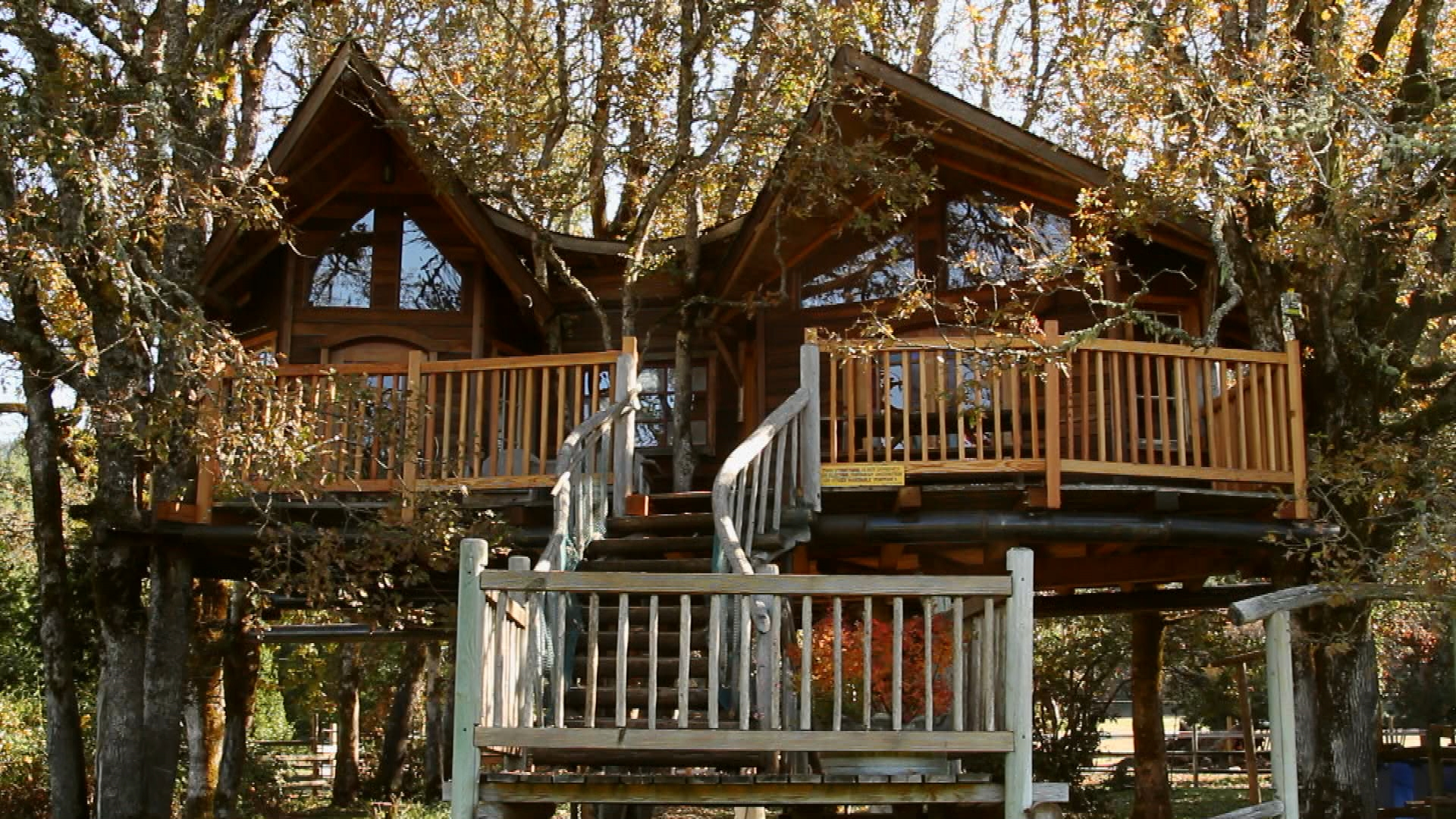 Best Treehouses Best Ever Treehouses Red Arrow Industries